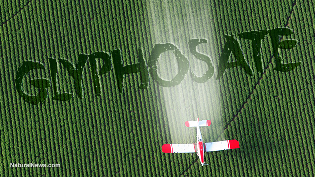 Pesticide chemicals really did originate with the Third Reich, were used to kill people during the Holocaust